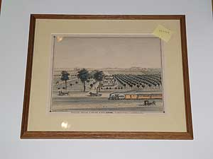 [Framed Lithograph]: Residence, Orchard and Vineyard of A.F. Coronel, Alameda Street, Los Angeles, Cal. A. F. CORONEL.