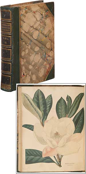 The Botanical Cabinet: consisting of Coloured Delineations of Plants, from all Countries, with a short Account of each, Directions for Management &c. &c. (Volume IX)