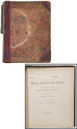Illustrations of West American Oaks