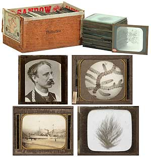 Isaac Holden's Glass Lantern Slide Shows: Specimens of North American Marine Algae and Views of Newfoundland: circa 1885-1897. Isaac HOLDEN.