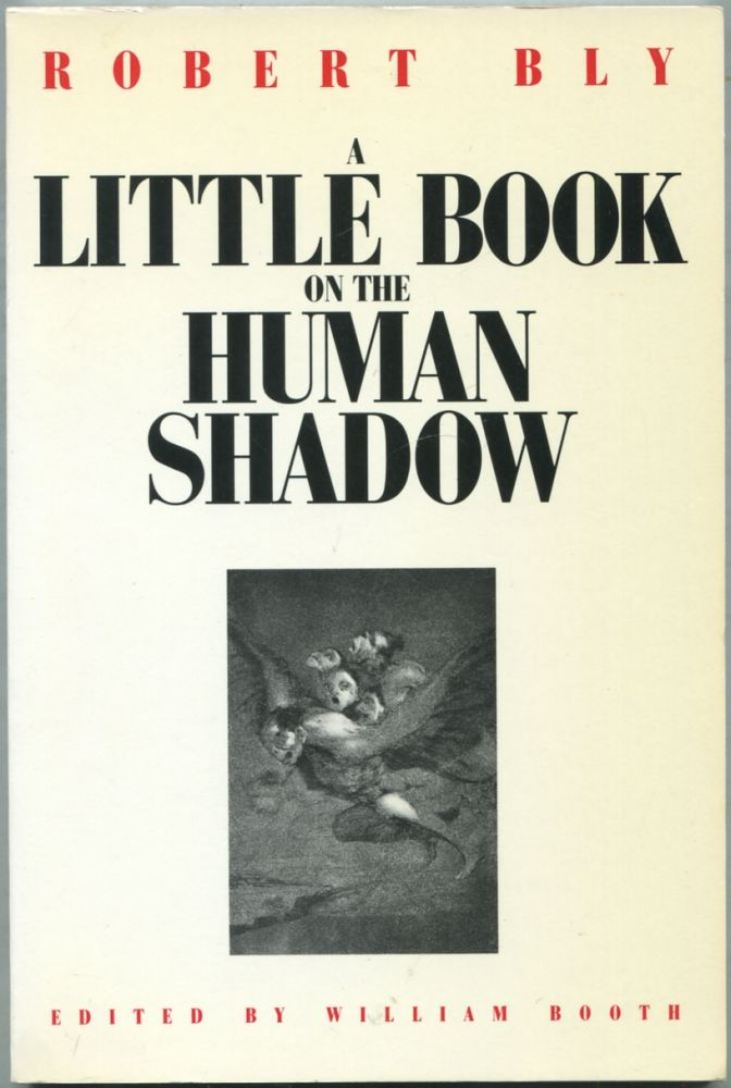 A Little Book on the Human Shadow. Robert BLY.