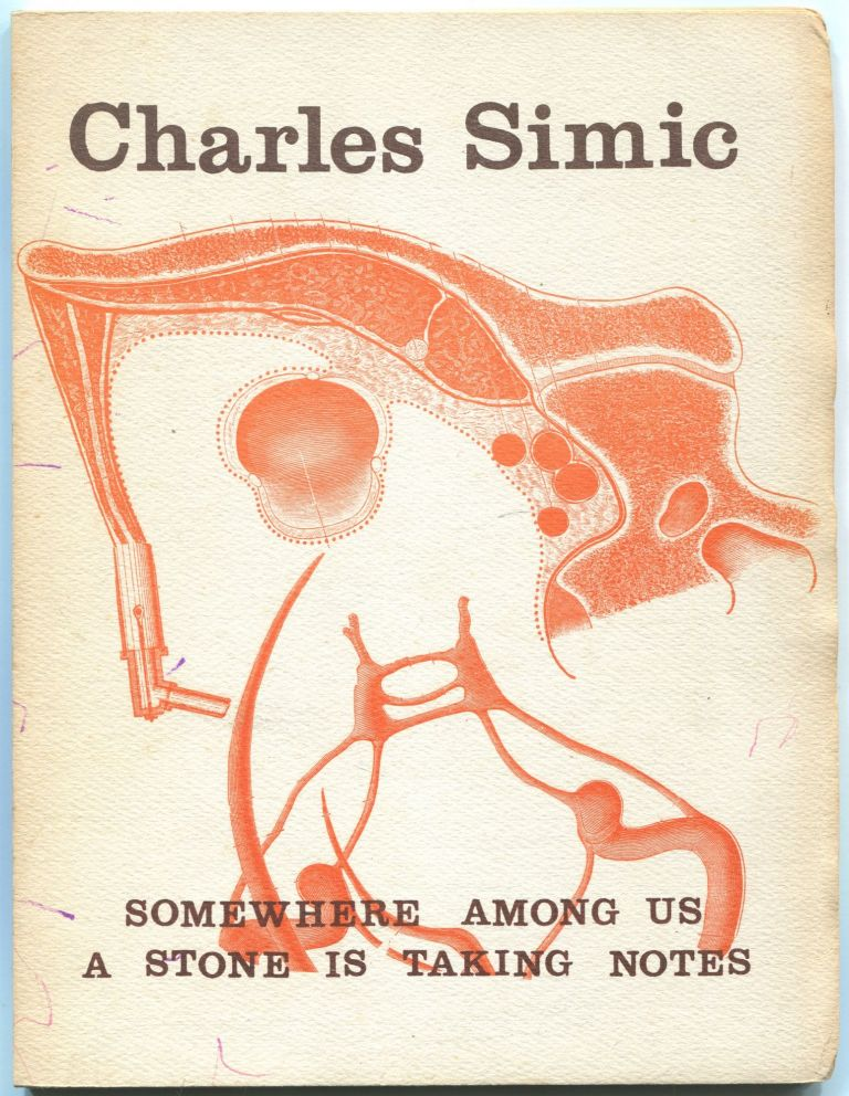 Somewhere Among Us a Stone is Taking Notes. Charles SIMIC.