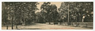 Panoramic real photo postcard]: Broadway, Salem, New Jersey, showing Old Oak, Friends' Cemetery