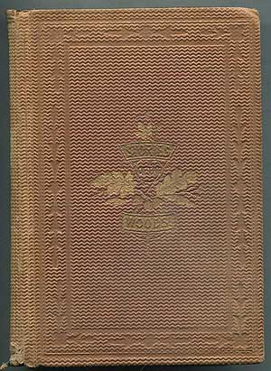 Stories of the Woods; or, Adventures of Leather-Stocking. James Fenimore COOPER
