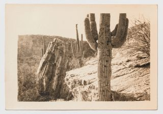 [Loose Photographs]: Train Trip from St. Louis through Texas and New Mexico and on to Tucson, Arizona