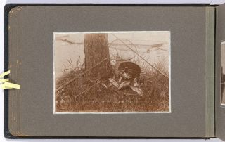 [Photo Album]: Art Photography by a Maine Woman, 1902-1906